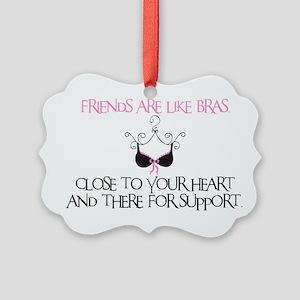 Friends Picture Ornament