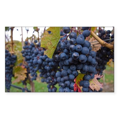 Grapes on the Vine Sticker (Rectangle)