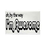 By The Way I'm Awesome Rectangle Magnet (10 pack)
