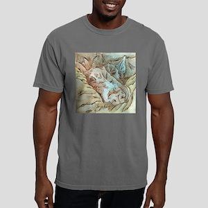 Let Sleeping Dogs Lie Mens Comfort Colors Shirt