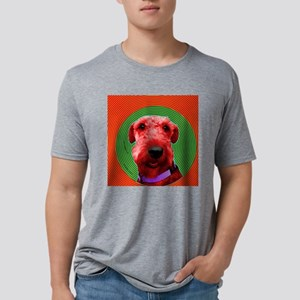 alforn Mens Tri-blend T-Shirt