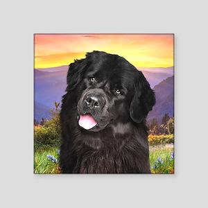 "Newfoundland Meadow Square Sticker 3"" x 3"""