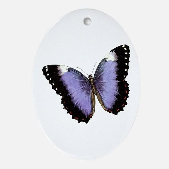Satin Butterfly Oval Ornament
