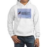 Flagpole and verse Hooded Sweatshirt
