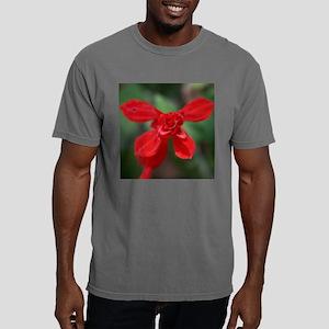 11x11_300dpi Mens Comfort Colors Shirt
