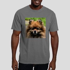 SablePom-Tile Mens Comfort Colors Shirt