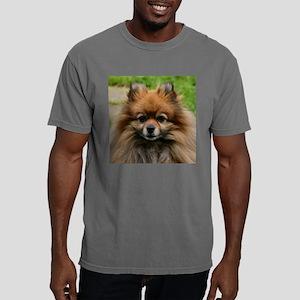 SablePom-RoundOrn Mens Comfort Colors Shirt
