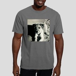 Christmas_ornament_5 Mens Comfort Colors Shirt