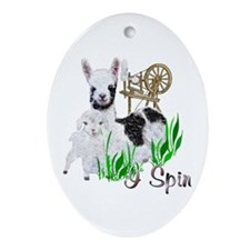 I Spin Oval Ornament