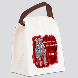 Everpng Canvas Lunch Bag