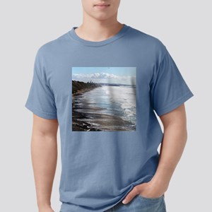 Swami's Beach California Mens Comfort Colors Shirt