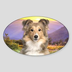Sheltie Meadow Sticker (Oval)