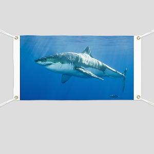 Great White Shark Banner
