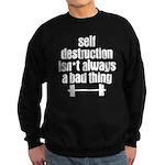 Self Destruction Sweatshirt (dark)