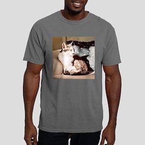 Pilllow1 Mens Comfort Colors Shirt