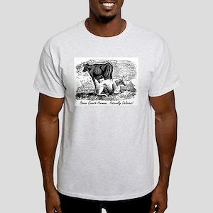 BGH Environmental Issues Ash Grey T-Shirt