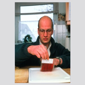 Testing for bacteria