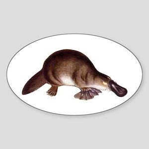 Platypus Oval Sticker
