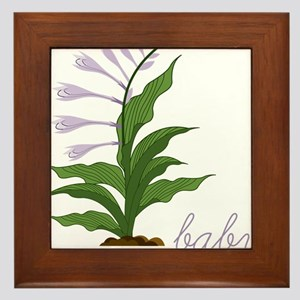 Hosta La Vista Framed Tile
