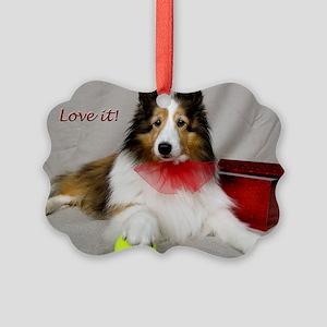 Love it! Picture Ornament