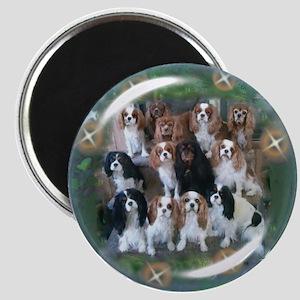 Cavalier King Charles Spaniel Group Magnet