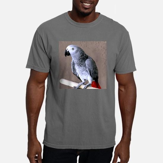 birdtile2.jpg Mens Comfort Colors Shirt