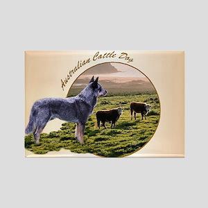 Australian Cattle Dog Rectangle Magnet (10 pack)