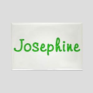 Josephine Glitter Gel Rectangle Magnet