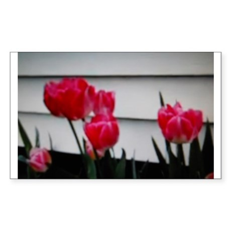 Tulips For Mother's Day Sticker (Rectangle)