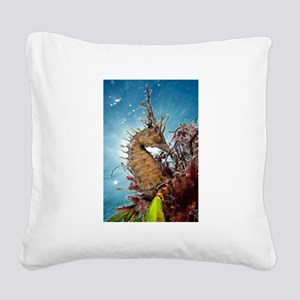 Sea Horse Square Canvas Pillow
