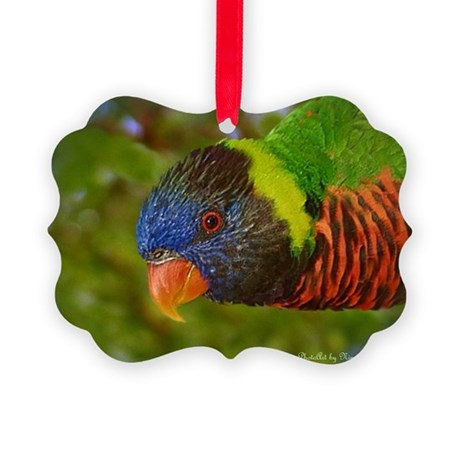 Rainbow Lorikeet Picture Ornament
