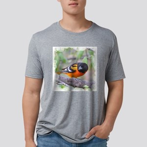 Northern Oriole Mens Tri-blend T-Shirt