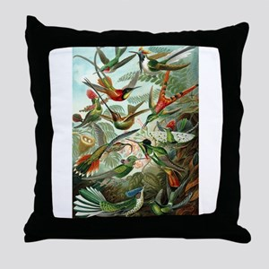 1899 Hummingbirds Art Forms of Nature Print Throw