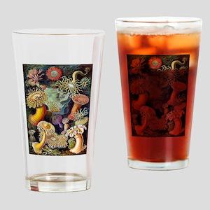 Antique 1904 Sea Anemone Nature Print Drinking Gla