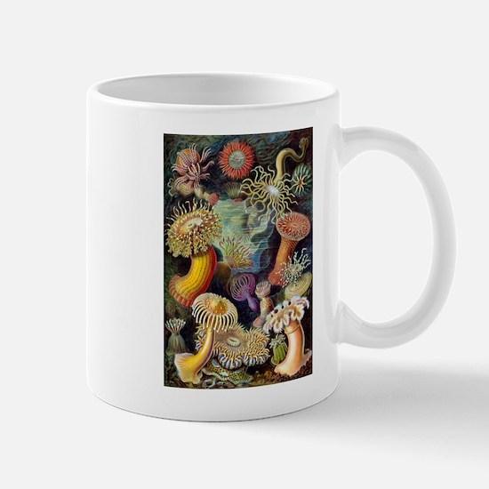 Antique 1904 Sea Anemone Nature Print Mug