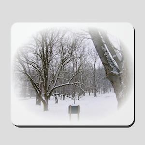 Beautiful Winter Scene Mousepad