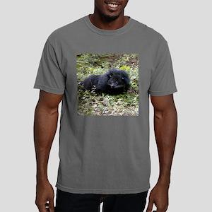 B Cat 15.35 008 Mens Comfort Colors Shirt