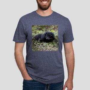 B Cat 15.35 008 Mens Tri-blend T-Shirt