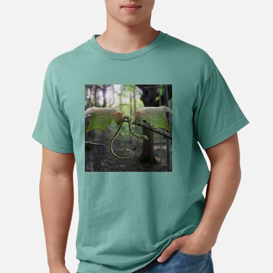 Fantasy Dragon Mens Comfort Colors Shirt