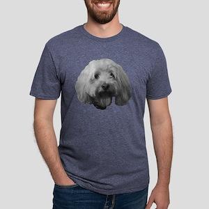Cody Mens Tri-blend T-Shirt