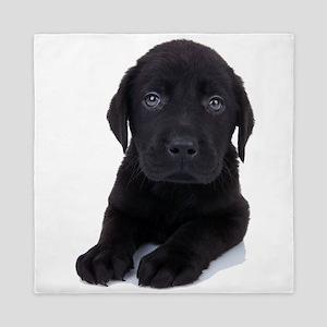 Curious Black Labrador Queen Duvet