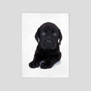 Curious Black Labrador 5'x7'Area Rug