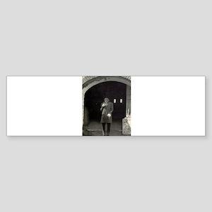 nosferatu Sticker (Bumper)