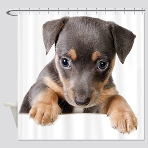 Peekaboo Dachshund Shower Curtain
