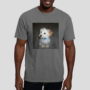 aubie Mens Comfort Colors Shirt