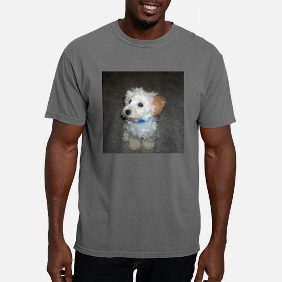 aubie.jpg Mens Comfort Colors Shirt