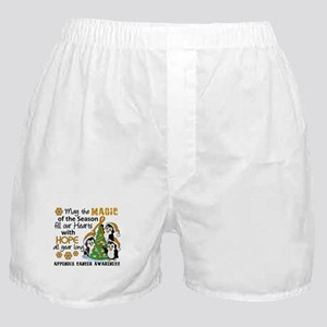 Holiday Penguins Appendix Cancer Boxer Shorts