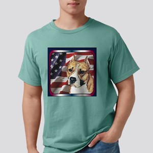4AS01Tile Mens Comfort Colors Shirt