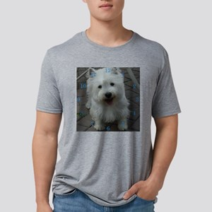 west2 Mens Tri-blend T-Shirt
