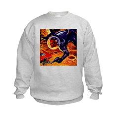 Fly-By Shooting Sweatshirt